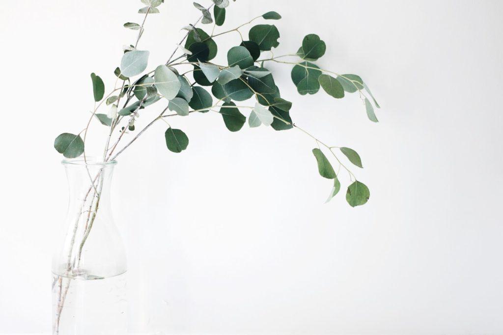 etre-minimaliste.com