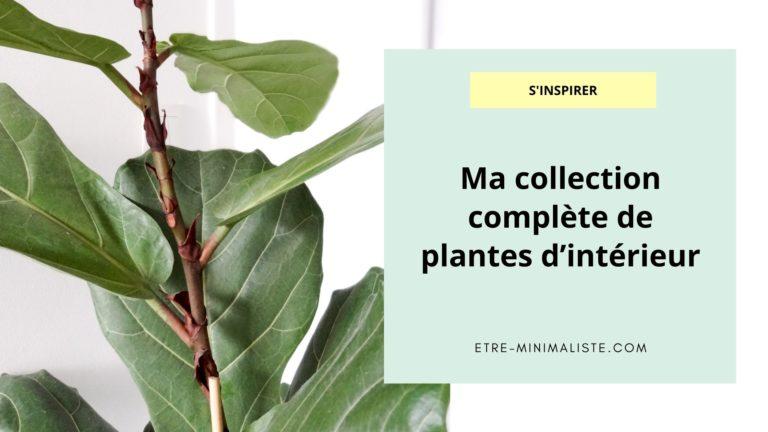 Ma collection complète de plantes d'intérieur